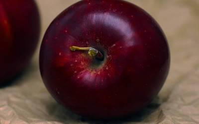 Shop Arkansas Black Apple - 5 Gallon