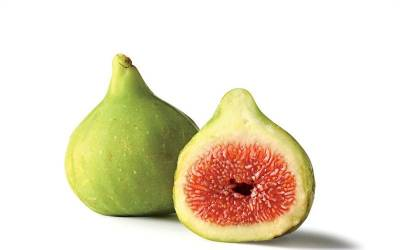 Shop Green Ischia Figs - 1 Gallon